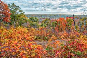 November View from Dune Ridge Trail