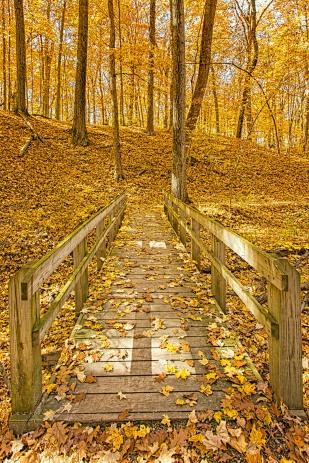 Trail Bridge at End of Autumn