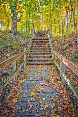 Trail Stairs in Autumn