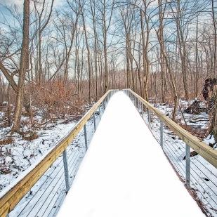 Cowles Bog Walkway in December Snow