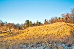 Dune Hill Under Angled Autumn Sunlight