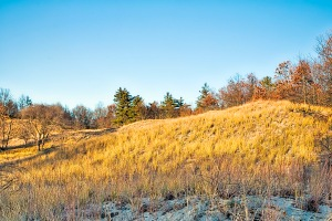Dune Hill Under Angled Autumn Sunlight