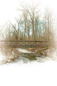 Footbridge After Lake-Effect Snowfall