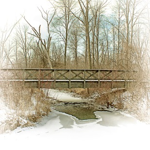 Footbridge After Lake-Effect Snowfall