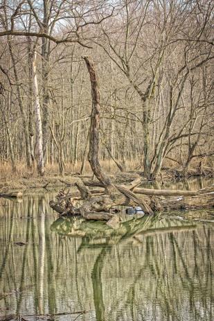 River Bend in December