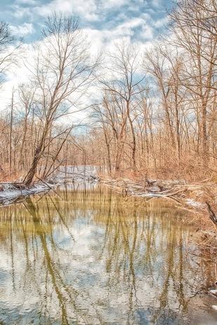 River in Mid-December