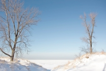 Two Trees at Entrance to Frozen Lake Michigan art sm