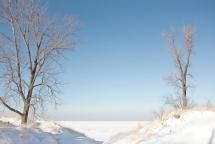 Two Trees at Entrance to Frozen Lake Michigan art sm