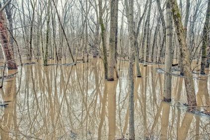 February Flooding 1 sm
