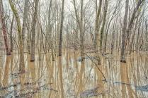 February Flooding 2 sm