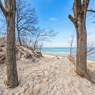 Trail Toward Beach in March