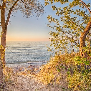 Beach Path in Spring Light