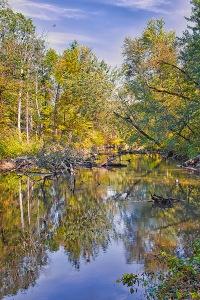 Still Waters in Mid-October with Hawk