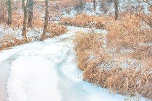 Creek Under January Snow