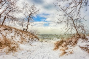 Path to Lake in Winter