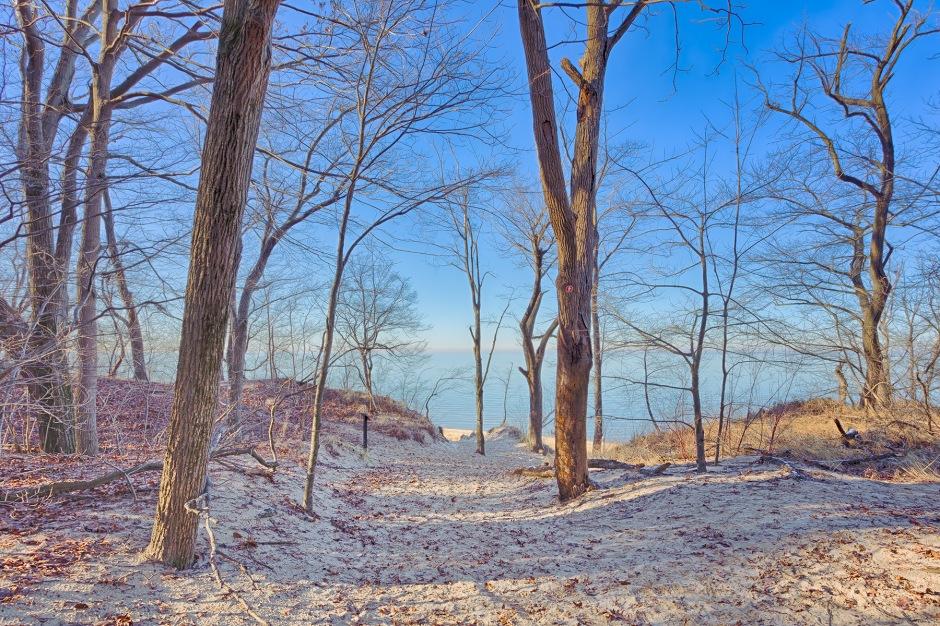 Trail Seven Toward Shore