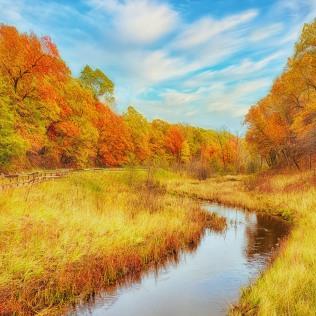 Dunes Creek in Autumn sq