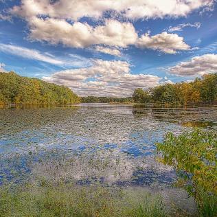 Lake in Early Autumn sq