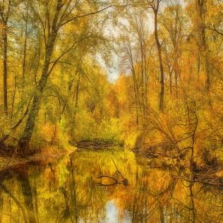 October River sq