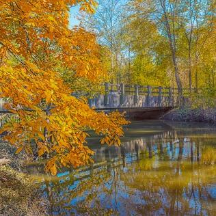 River Bridge in Autumn sq