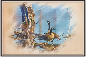 Marsh Birds PR sm
