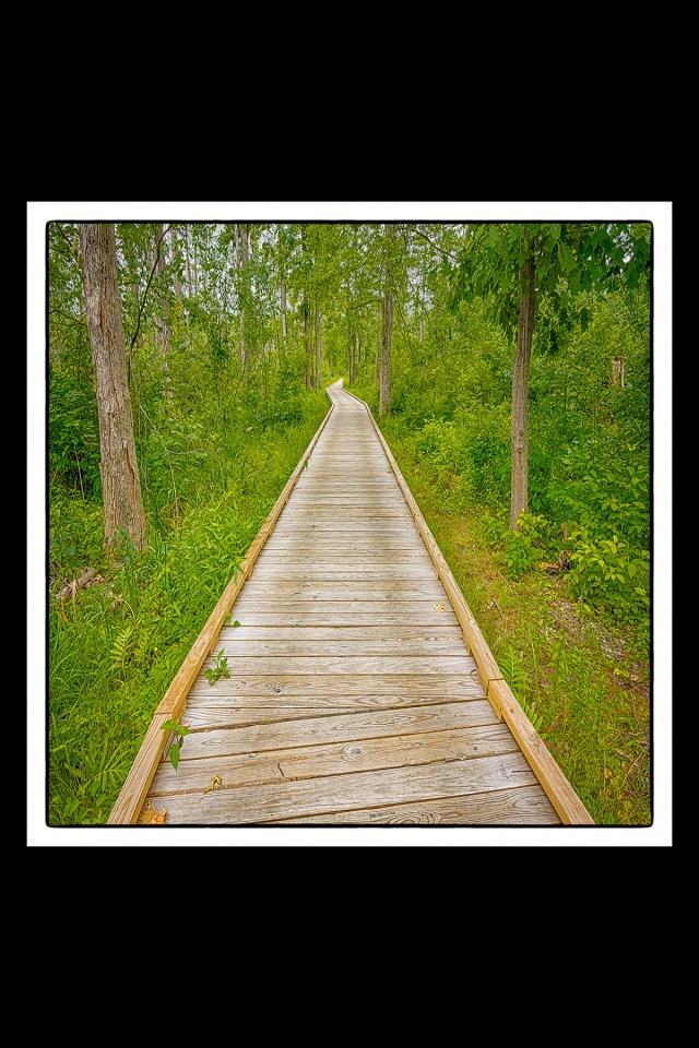 Trail 2 Boardwalk 4x6 sq sm PR fr