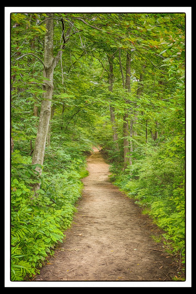 Trail 8 in July PR sm