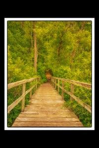 Wilson Bridge 4x6 sm fr b PR